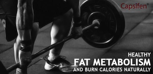fat metabolism